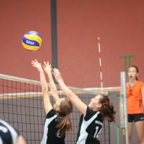 Durchwachsenes Spielwochenende bei den Volleyballern