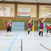 Volleyballer blicken auf ein erfolgreiches Wochenende zurück