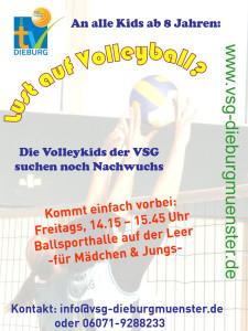 Handzettel-Volleykids-2013